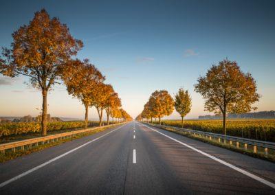 Qualité des infrastructures routières